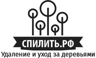 Валка деревьев в СПБ и Москве